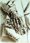 Hand,  Sketch, charcoal on paper, 21x29cm, 2002